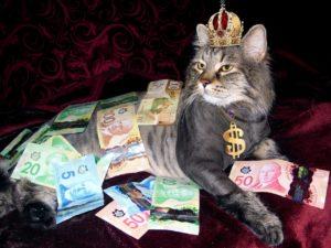 お金にまみれた、王冠をかぶった猫